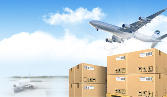 Licenciatura en Comercio Internacional y Aduanas